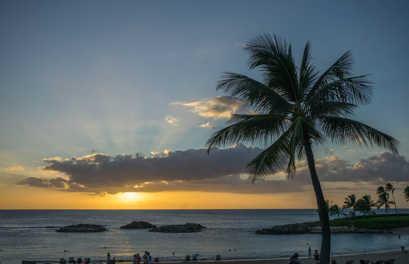 Dating vita in Hawaii Doggy dating questa mattina